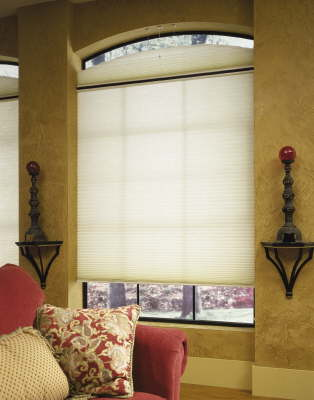 EcoSmart Cellular Shades available in many sizes and shapes