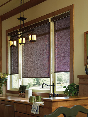 black roller shades screen